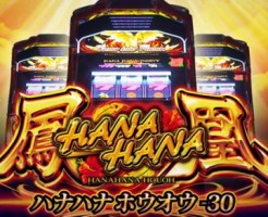 hanahanahouou30